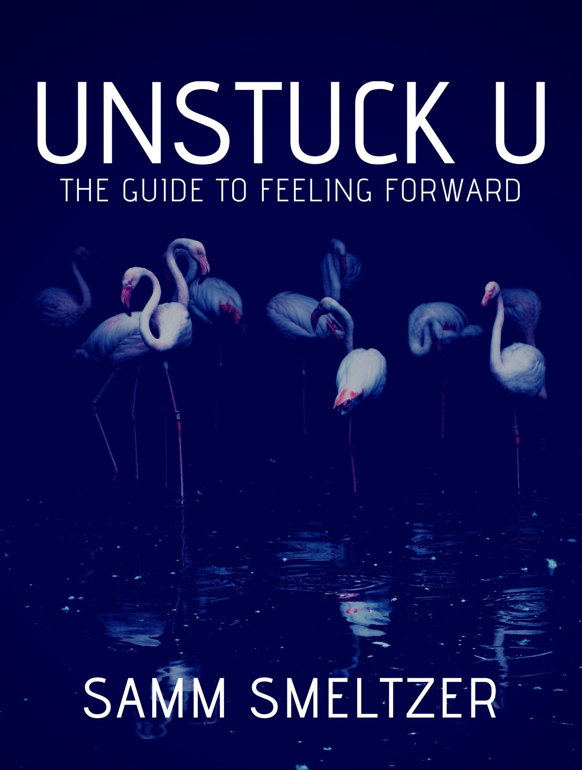Unstuck U front cover image